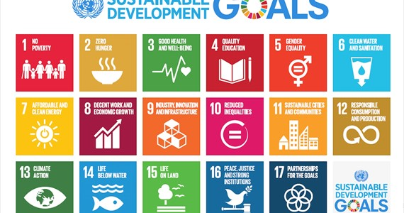 Want to help UN SGD implementation and a give your contribution? Check My World 2030!
